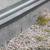 Fot. 5, 6. Obszar przy attyce i naświetlu nie może być przykryty zielenią.  Zdjęcie pokazuje także wyjątkową niedbałość wykonawcy.  Podłoże pod membranę EPDM musi być równe, bez kantów i wtrąceń (fot. autor