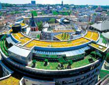 Fot. 1. Efekt, jaki pozwala uzyskać wykonanie dachu zielonego (fot. Bauder)